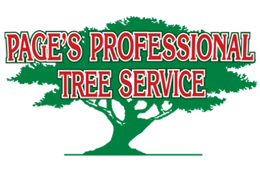 pages Professional Tree Services