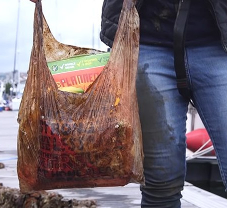 Are Biodegradable Bags Really Biodegradable?