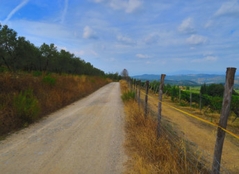 looking for new ways from Siena to Florence