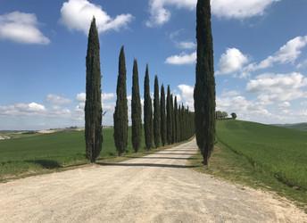 New Photo Album Italy Divide 2017