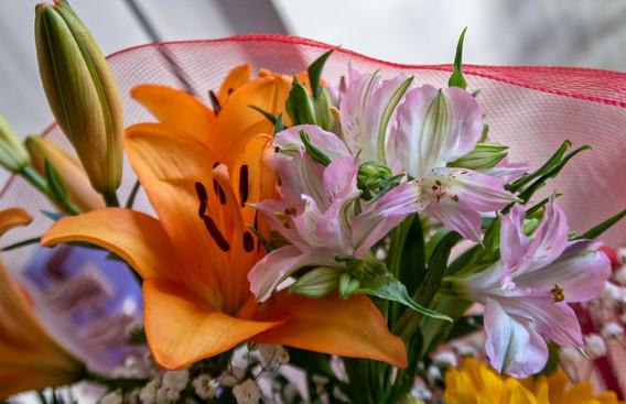 G7X - Bouquet di fiori_0009.jpg