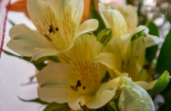 G7X - Bouquet di fiori_0012.jpg