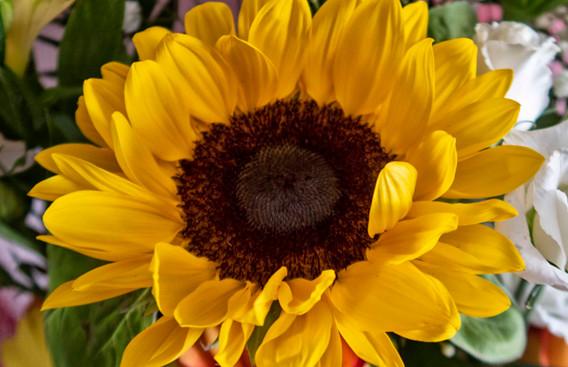 G7X - Bouquet di fiori_0006.jpg