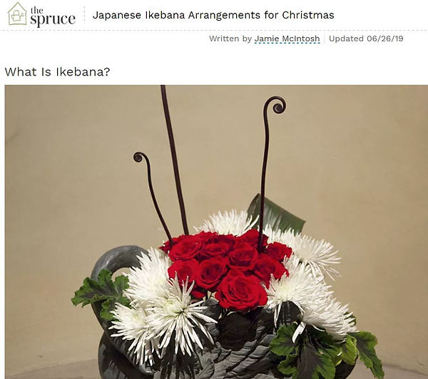 Article 4 Spruce Christmas Capture.JPG