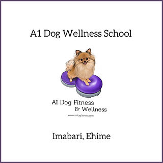 A1 Dog Wellness School.jpg