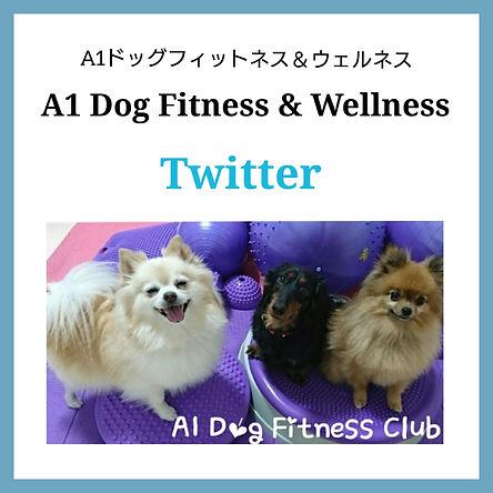A1 on Twitter.jpg