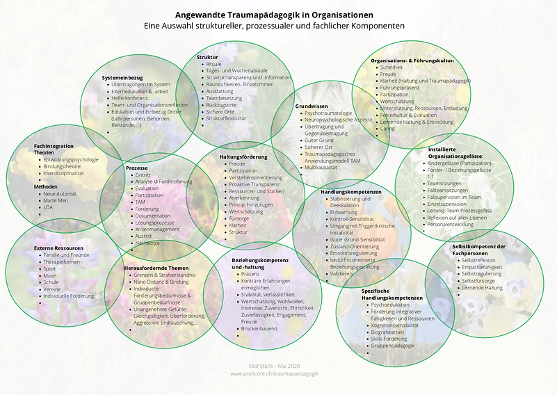 Angewandte Traumapädagogik in Organisati