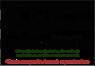 logo ptits menhirs.png