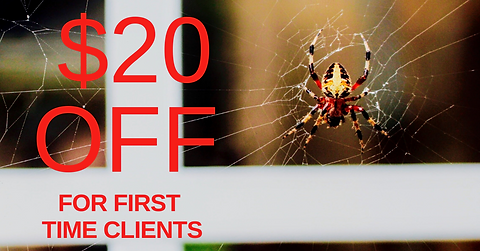Spider Coupon.png