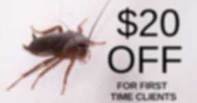 Roach Coupon.png