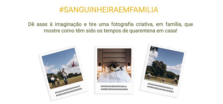 REGULAMENTO_CABEÇALHO.png