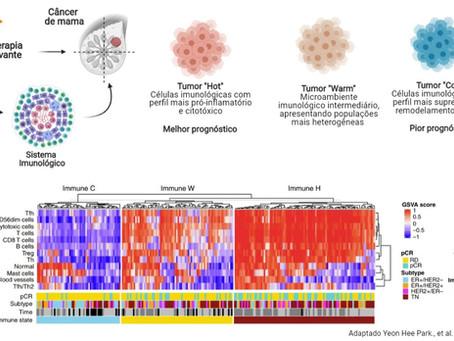 O impacto da quimioterapia sobre as respostas imunológicas