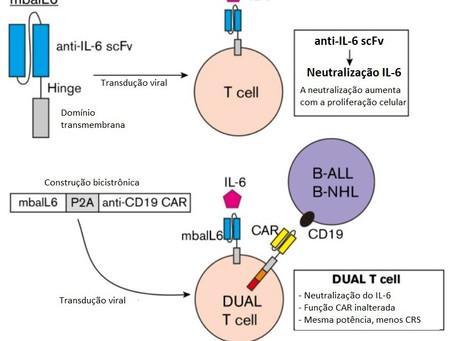 Aperfeiçoamento da terapia CAR-T pode evitar o surgimento da síndrome de liberação de citocinas.