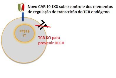 Células CAR-T universais derivadas de iPSCs serão finalmente testadas clinicamente