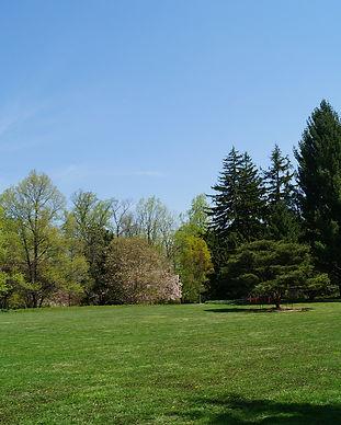 park-224443_1920.jpg