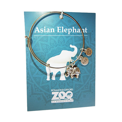 RGZ Branded Elephant Bangle
