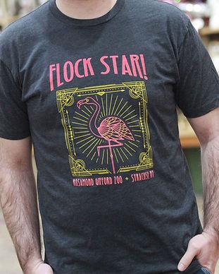 Syracuse-Zoo-FOTZ-RGZ-Flamingo-Flock-Sta