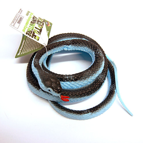 48-inch Blue Malaysian Coral Snake