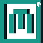 Microleadership - Hadyn.png