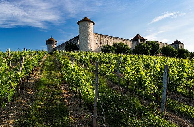 Château Branda.jpg