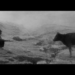 """24 Festival de Cine de Lima: """"Samichay, en busca de la felicidad"""" (2020), el duelo y la falta"""