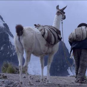 """""""Wiñaypacha"""": un salto hacia la autenticidad en el cine peruano"""