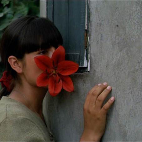"""Posibles claves para entender """"La Teta asustada""""(2009)"""