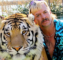 Tiger King.webp