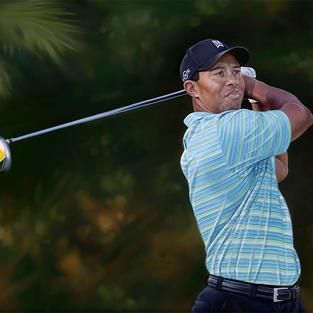 Tiger Woods 42x59 cm