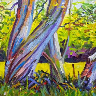 Australian Gum Tree 33x53 cm