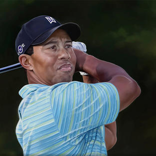 Tiger Woods (detail)