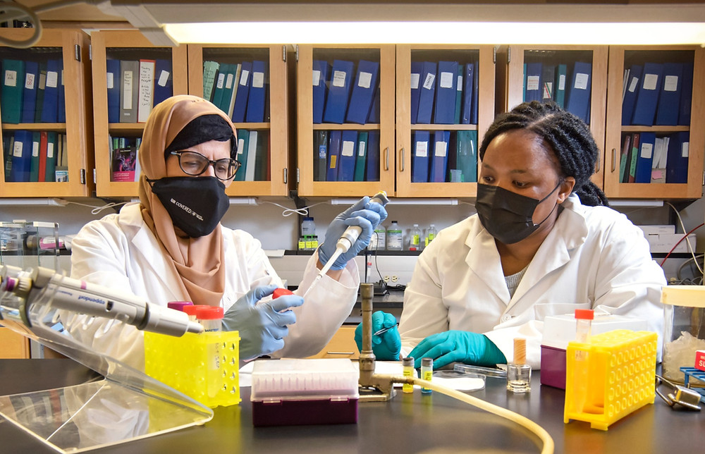 Two people working in a chemical laboratory