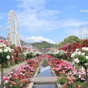 「九州の自然・風景・祭り」ハウステンボス