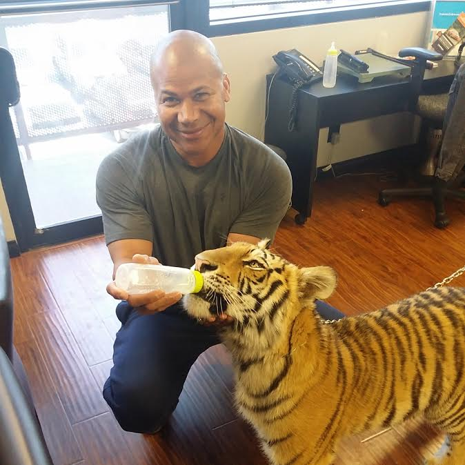 Brennan_Tiger.jpg