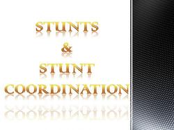 Stunts_StuntCoordination.jpg