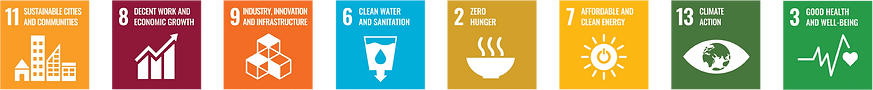 IGC_SDG_Icons_ordered_08Jan20.png