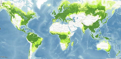 WRI_Potential_Forest_Cover_22May20.png