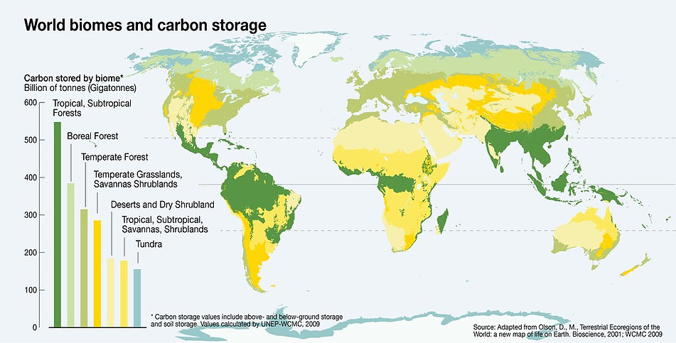 27_World_biomes_carbon_storage_17Sept20.