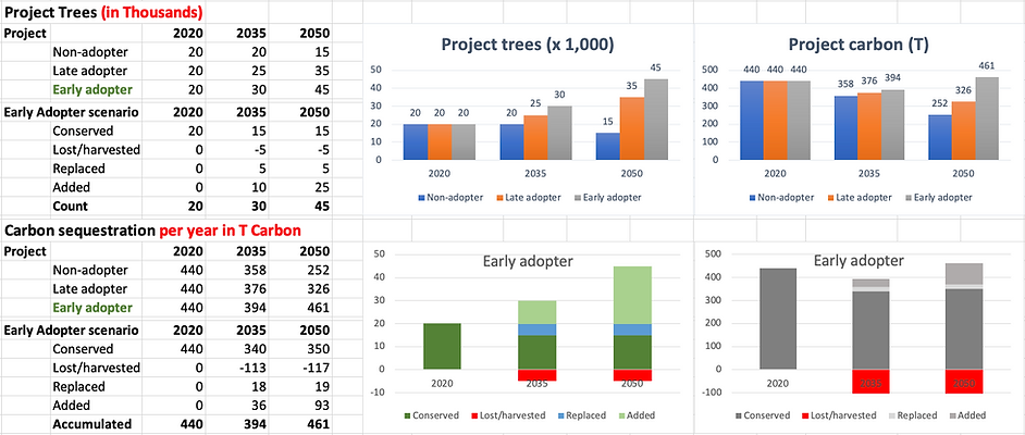 Project_tree_carbon_poster_11Oct20.png