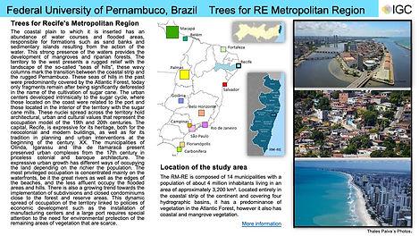 7-Federal University of Pernambuco.jpg