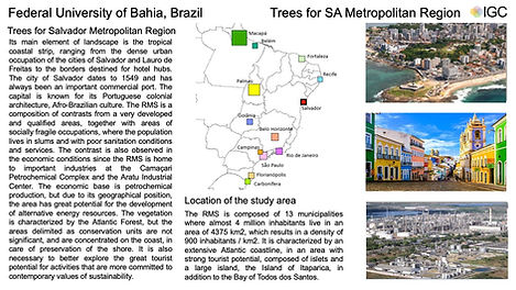 2-UFBA_PowerPoint_21052021.jpg
