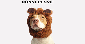 Why consultants suck?