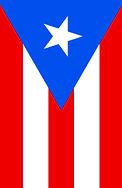 Puerto Rican Flag.jpg