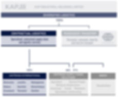 company structure Africa2.jpg