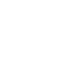 The Pirates of Manhattan - Written by Barry James Dyke