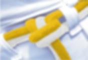 02 - crua-amarela-min.png
