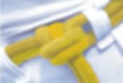 03 - amarela-min.png