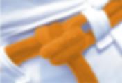 05 - laranja-min.png