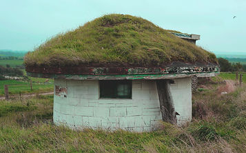 Toad House.jpg