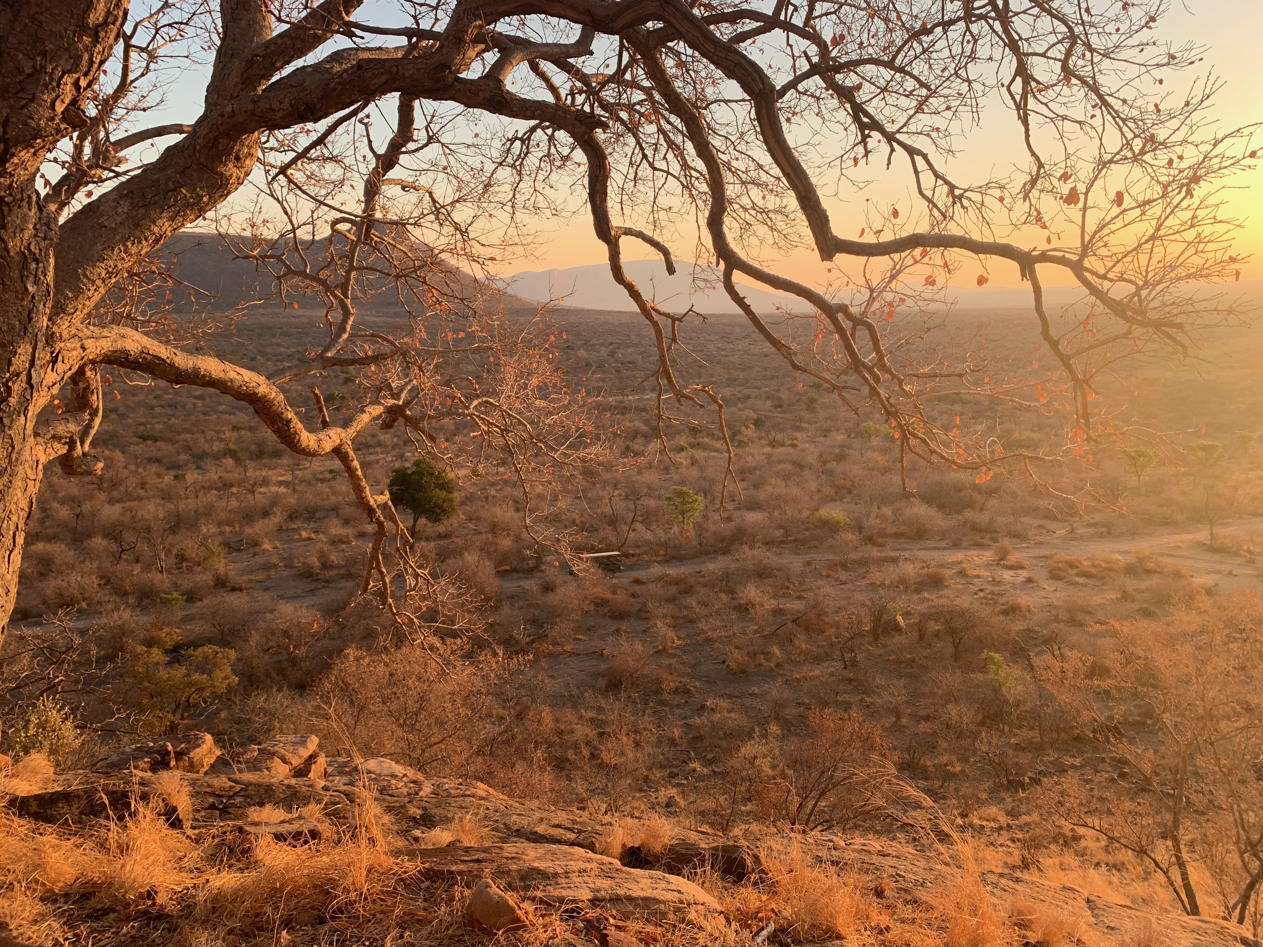Marataba_landscape